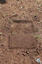 kim 7) 2017 08 26 otzberg basalt 01 web